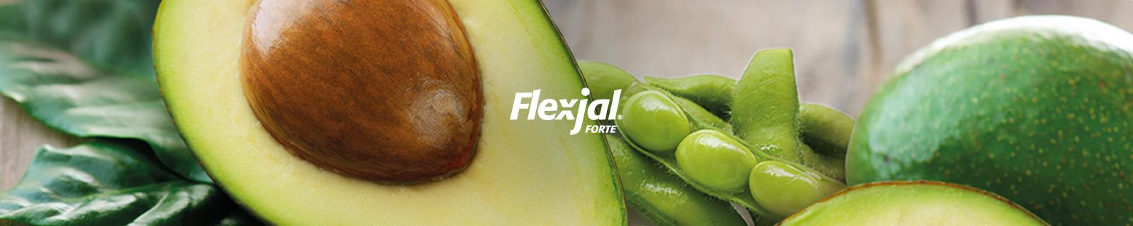 Flex-jal Forte Integratore