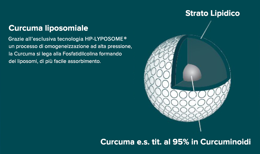 curcuma liposomiale